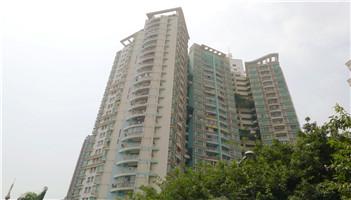 百分百公寓_业主论坛 - 家在深圳
