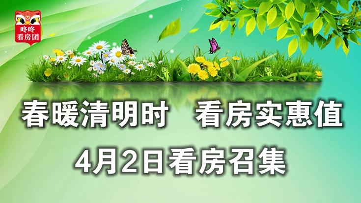 春暖清明时,看房实惠值——4月2日龙岗看房召集