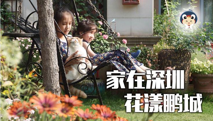【家在深圳,花漾鹏城】2017花草显摆活动开始啦!