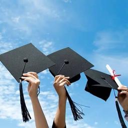 大学和留学