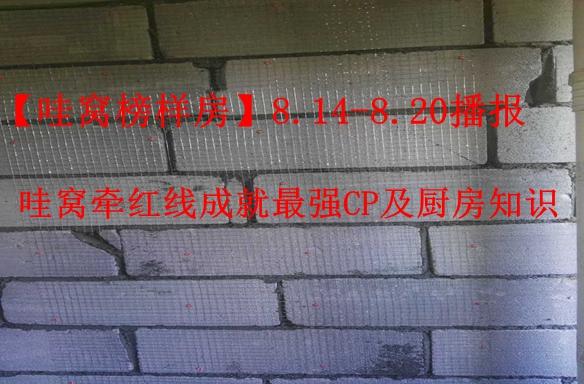 【哇窝榜样房】8.14-8.20播报,哇窝牵红线成就最强CP及厨房知识