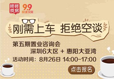 深圳到惠阳大亚湾,除了面聊还能实地看房!