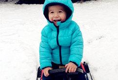 荷兰今冬的第一场雪
