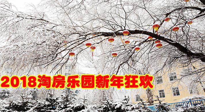 2018淘房乐园新年狂欢