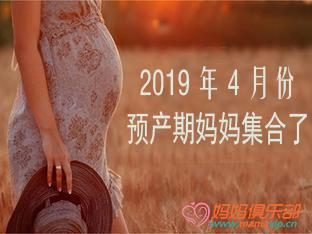 深圳19年4月孕妈集合啦!