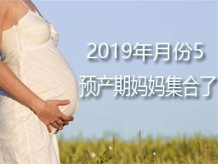 【退休妇产科医生在线回复孕期问题】深圳19年5月预产期孕妈群已开!!孕妈妈们集合啦!