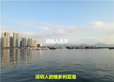 """深圳人的""""维多利亚港"""""""