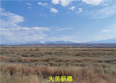 大美新疆,一个思念的诗和远方!