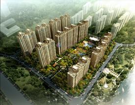 中海龙湾国际_业主论坛 - 家在深圳